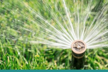 Irrigation & Maintenance