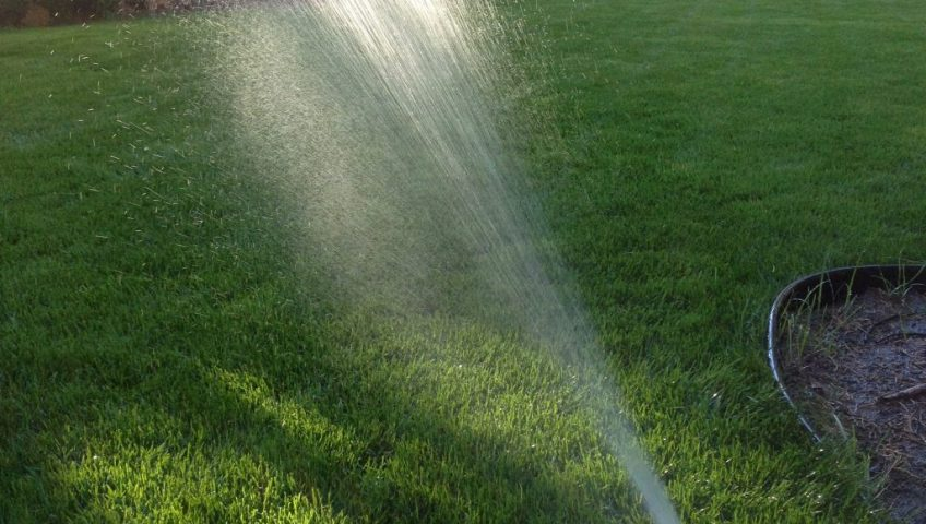 How Often Should I Water My Lawn Good Life Landscaping